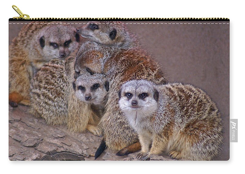 Mer Cats Carry-all Pouch featuring the photograph Freezing Meer Cats by Heather Coen