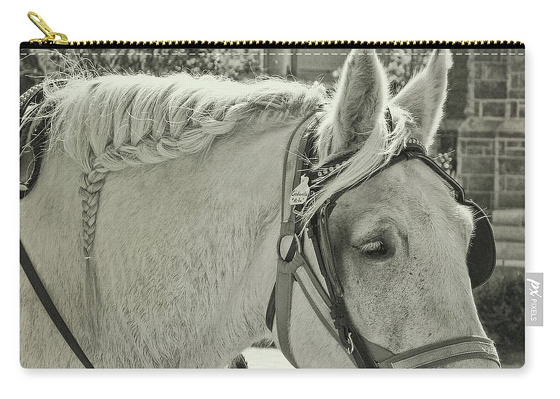 Horse Carry-all Pouch featuring the photograph French Braided Gray by JAMART Photography