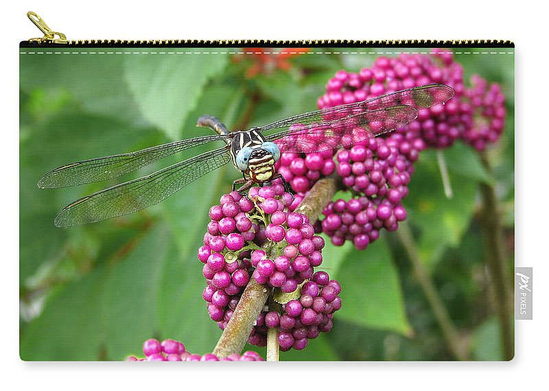 Gardens Carry-all Pouch featuring the photograph French Mulberry by Peg Urban