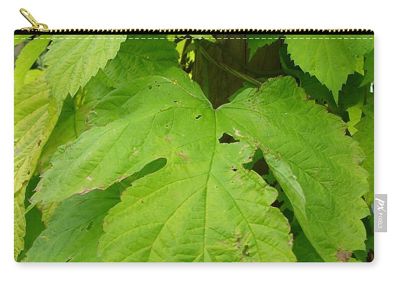 Hop Carry-all Pouch featuring the photograph Fresh English Golden Hop by Susan Baker