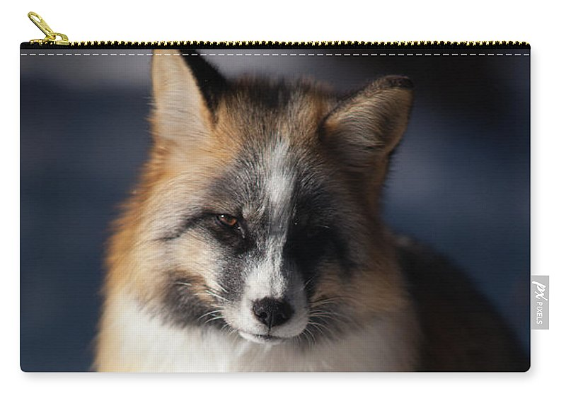Fox Carry-all Pouch featuring the photograph Friendly Fox by Ward Thurman