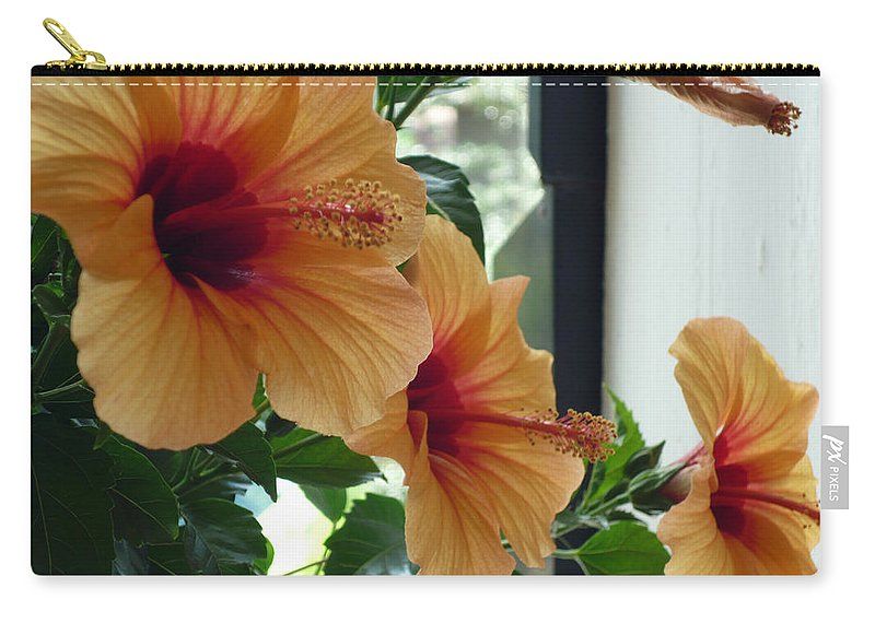 Photography Flower Floral Bloom Hibiscus Peach Carry-all Pouch featuring the photograph Friends For A Day by Karin Dawn Kelshall- Best
