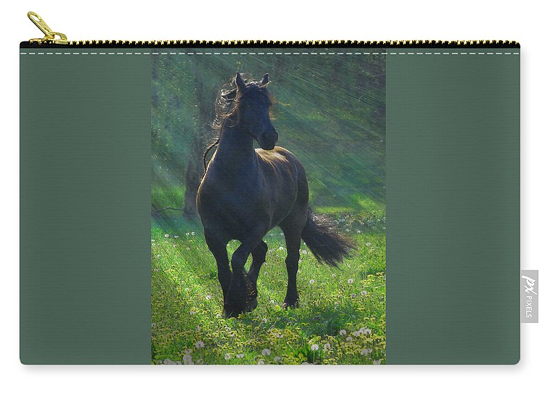 Horses Carry-all Pouch featuring the photograph Friesian Sun by Fran J Scott