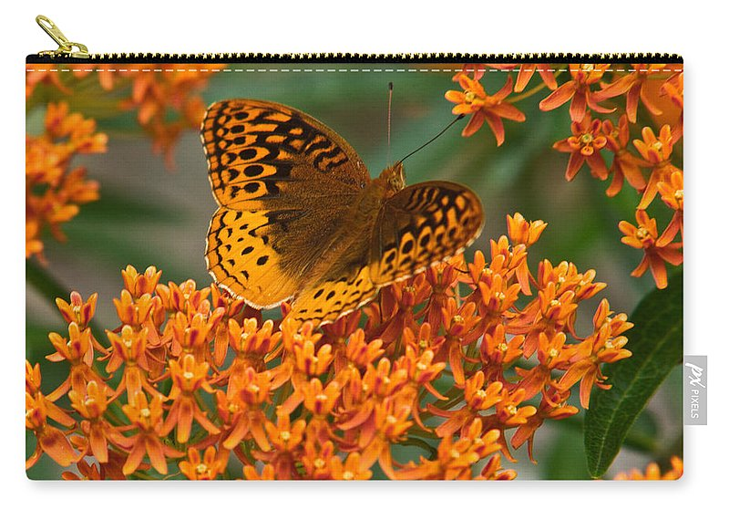 Frittalary Carry-all Pouch featuring the photograph Frittalary And Milkweed by Douglas Barnett