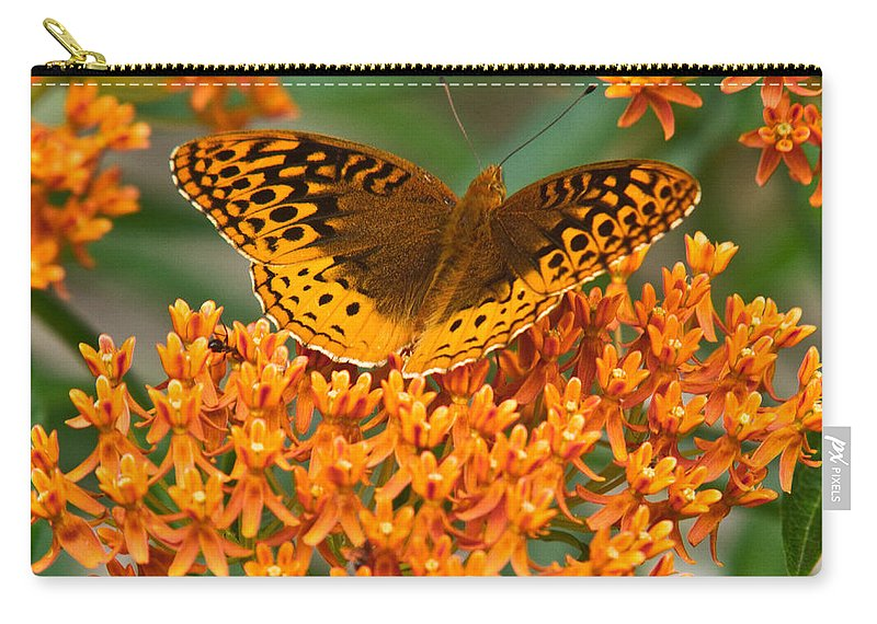 Frittalary Carry-all Pouch featuring the photograph Frittalary by Douglas Barnett