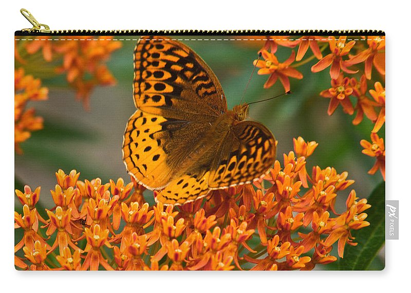 Frittalary Carry-all Pouch featuring the photograph Frittalary Milkweed And Life by Douglas Barnett