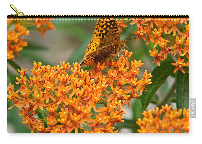 Frittalary Carry-all Pouch featuring the photograph Frittalary Milkweed And Nectar by Douglas Barnett