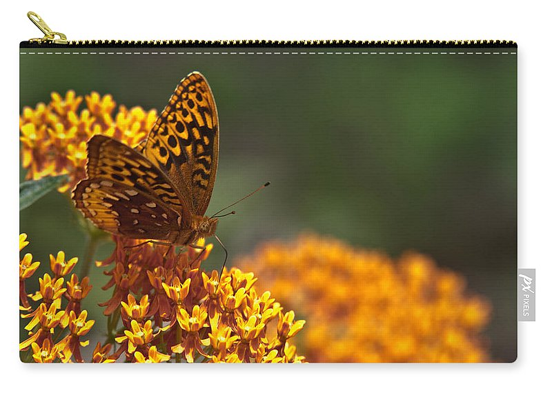 Frittalary Carry-all Pouch featuring the photograph Frittalary On The Prowl by Douglas Barnett