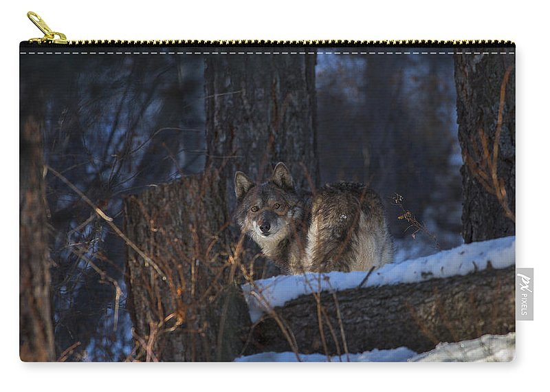 Wolf Carry-all Pouch featuring the photograph From A Distace by Jeff Shumaker