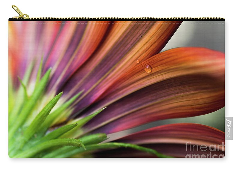 Wilton Carry-all Pouch featuring the photograph From Behind by Wendy Wilton