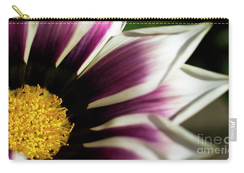 Flower Carry-all Pouch featuring the photograph From Crimson To White by Wendy Wilton