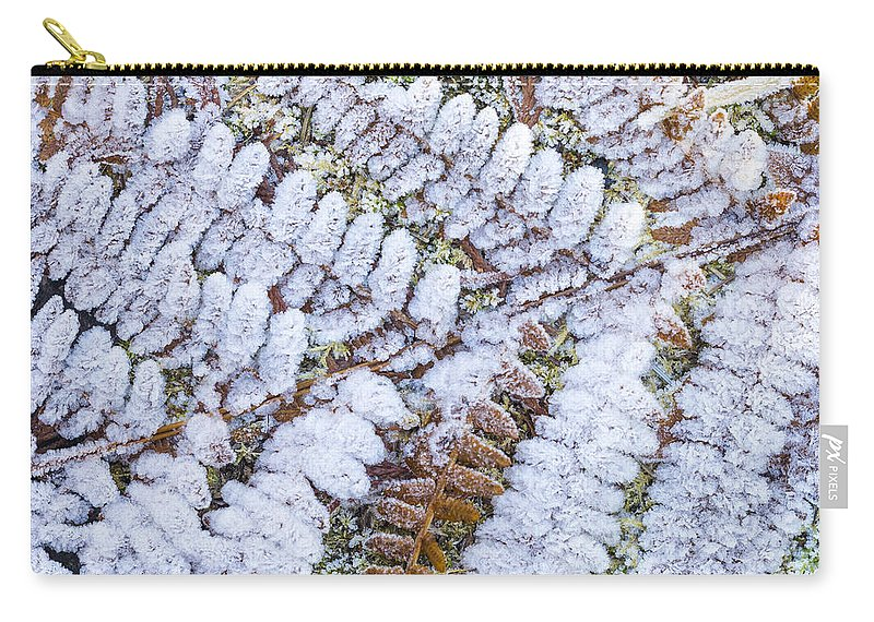 Autumn Carry-all Pouch featuring the photograph Frosted Fern by John Trax