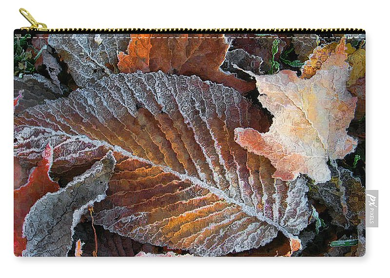 Leaves Fall Autumn Orange Red Brown Photograph Photography Photographer Carry-all Pouch featuring the photograph Frosted Painted Leaves by Shari Jardina