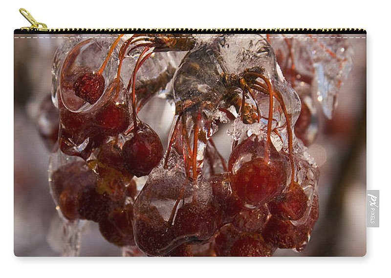 Berry Berries Red Frozen Ice Icy Snow White Spark Tree Winter Storm Glare Sun Reflection Carry-all Pouch featuring the photograph Frozen Berries by Andrei Shliakhau