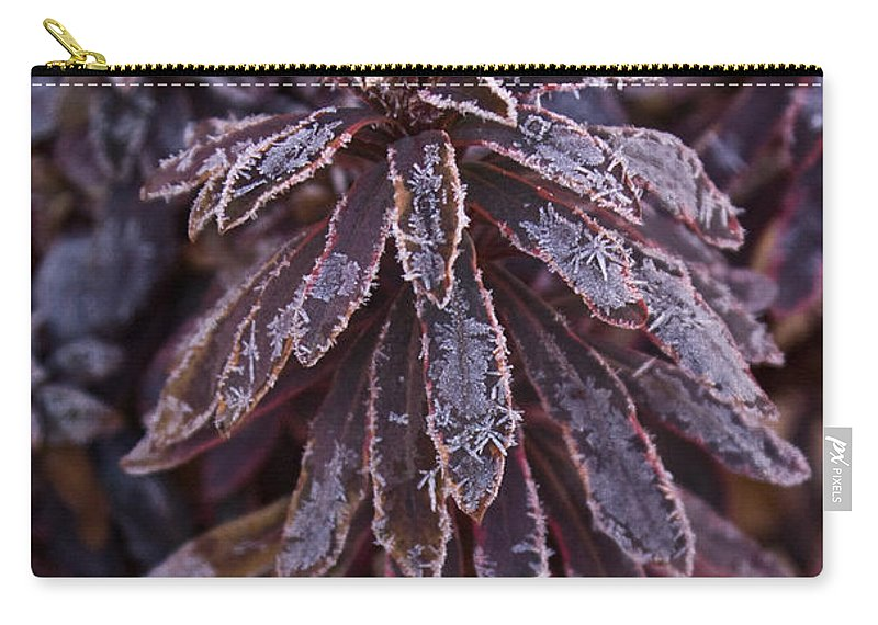 Christmas Carry-all Pouch featuring the photograph Frozen Christmas by Douglas Barnett