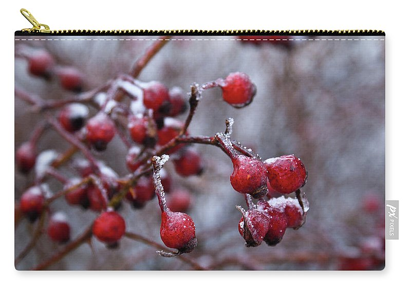 Frozen Carry-all Pouch featuring the photograph Frozen Fruit by Douglas Barnett