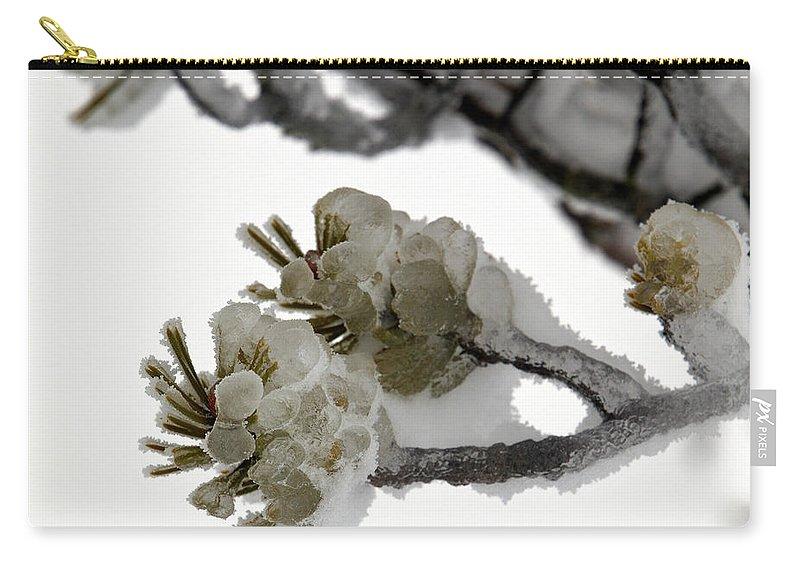 Lehtokukka Carry-all Pouch featuring the photograph Frozen Pines 1 by Jouko Lehto