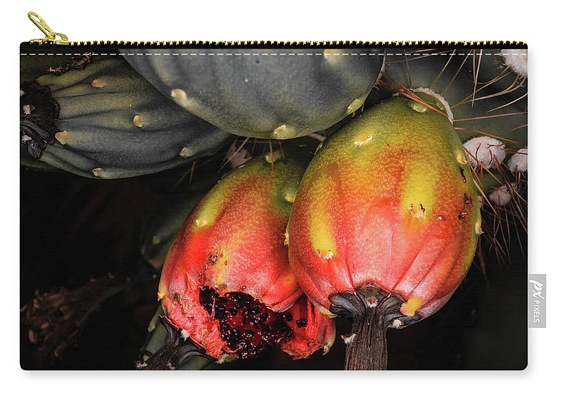 Saguaro Carry-all Pouch featuring the photograph Fruit Is The Star by Dennis Swena