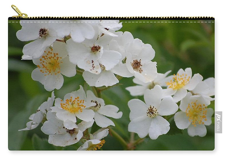 Carry-all Pouch featuring the photograph Fruity Potential by David Lane