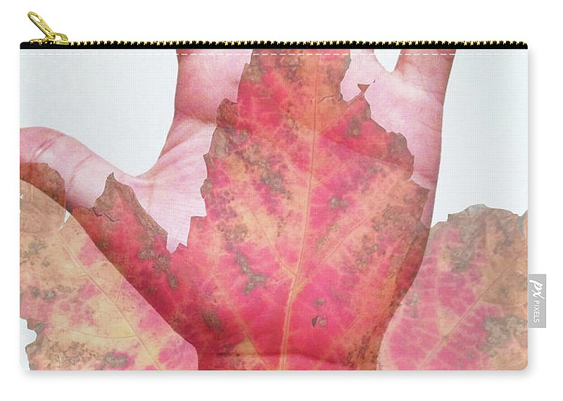 Carry-all Pouch featuring the photograph Function Of The Universe by Andrea Schumacher