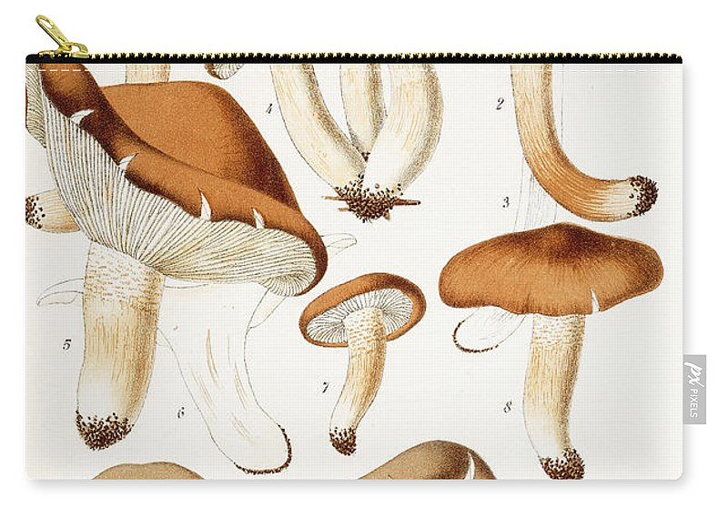 Funghi Carry-all Pouch featuring the painting Fungi by Jean-Baptiste Barla