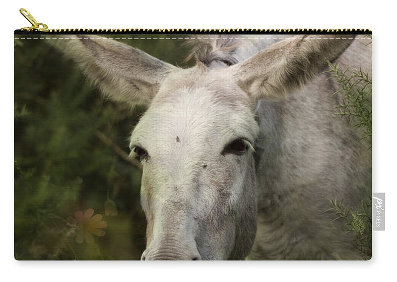 Donkey Carry-all Pouch featuring the photograph Funky Donkey by Angel Ciesniarska