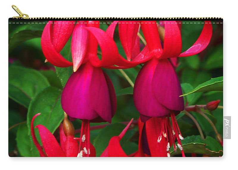 Flowers Carry-all Pouch featuring the photograph Fuschia Heron by Anthony Jones