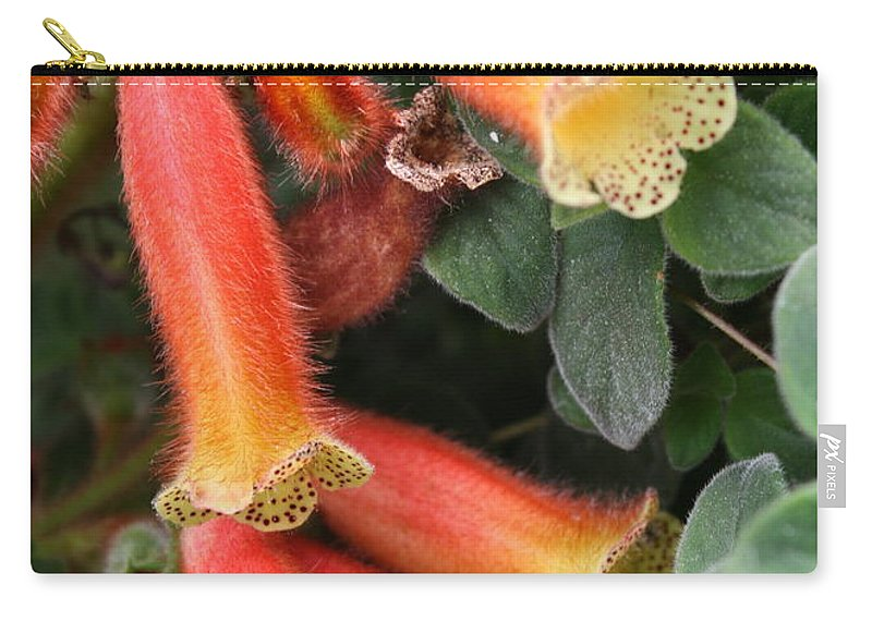 Smithiantha Carry-all Pouch featuring the photograph Fuzzy Temple Bells by Carol Groenen