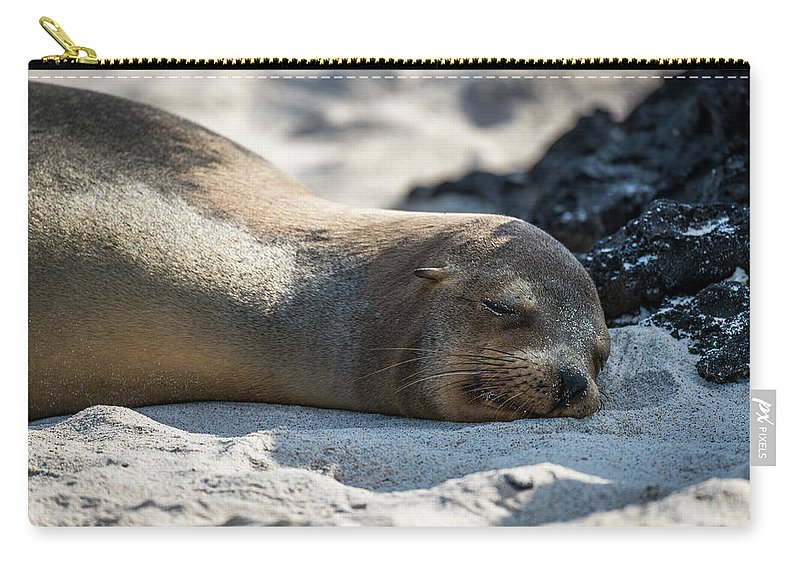 Galapagos Carry-all Pouch featuring the photograph Galapagos Sea Lion Asleep On Sandy Beach by Ndp
