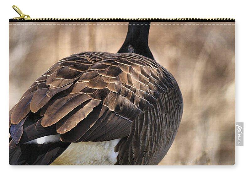 Goose Carry-all Pouch featuring the photograph Garden Goose by Deborah Benoit