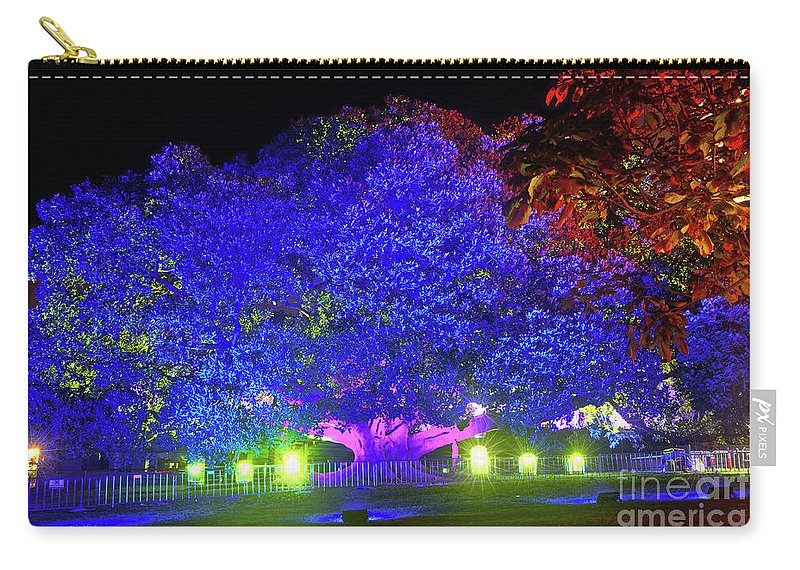 Garden Of Light Carry-all Pouch featuring the photograph Garden Of Light By Kaye Menner by Kaye Menner