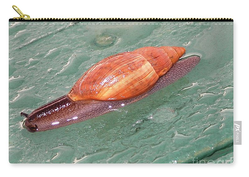 Green Carry-all Pouch featuring the photograph Garden Snail 4 by Mary Deal