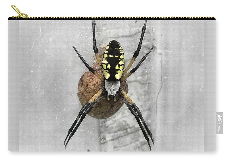 Spider Carry-all Pouch featuring the photograph Garden Spider by Amber Flowers