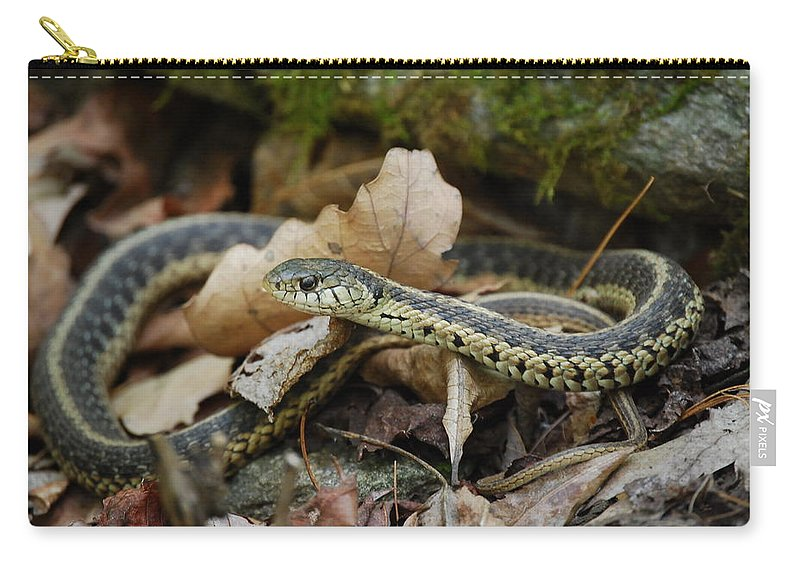 Snake Carry-all Pouch featuring the photograph Garter Snake by Eric Liller