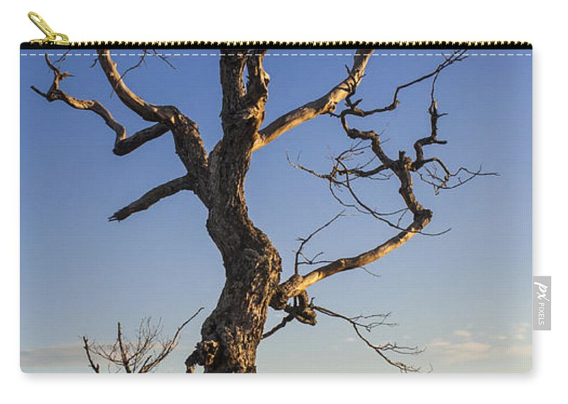 Natanson Carry-all Pouch featuring the photograph Gathering Light by Steven Natanson