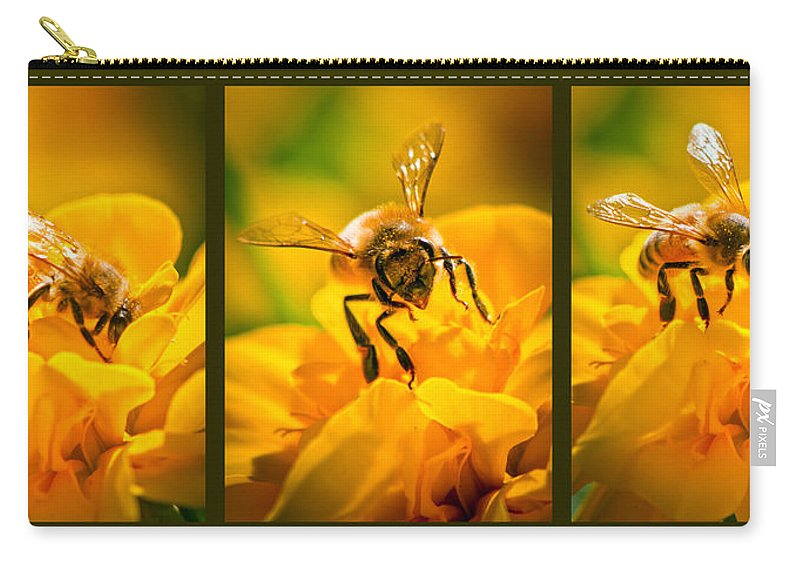 Bees Carry-all Pouch featuring the photograph Gathering Pollen Triptych by Bob Orsillo