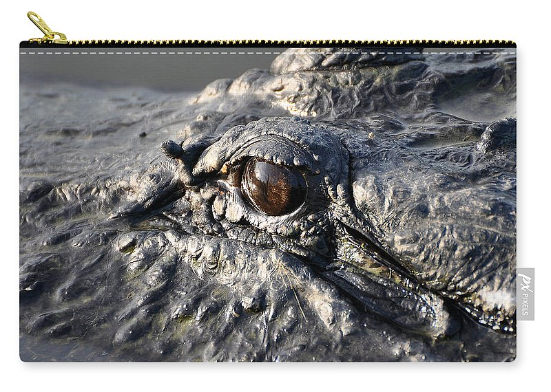 Alligator Carry-all Pouch featuring the photograph Gator Gaze by Al Powell Photography USA