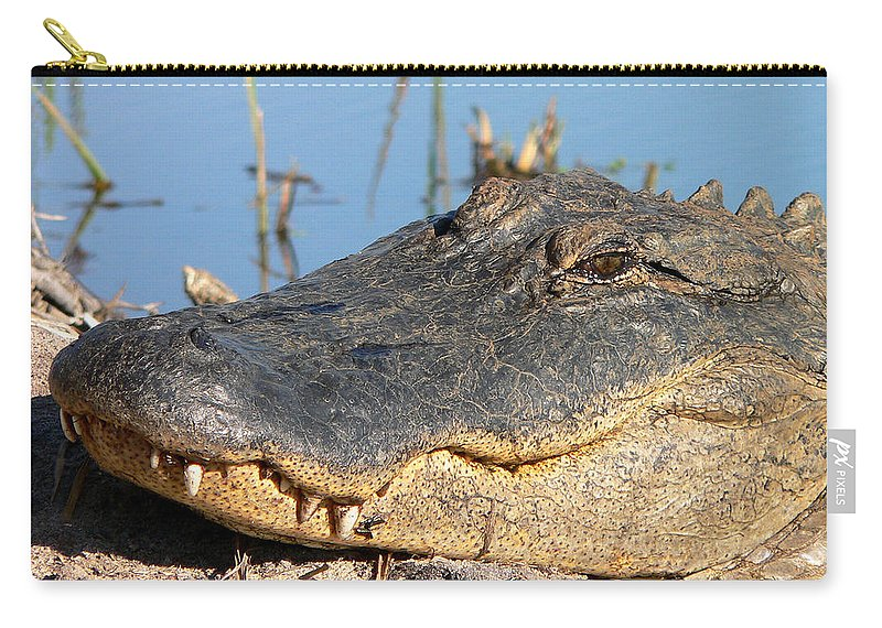 Alligator Carry-all Pouch featuring the photograph Gator Grin by Al Powell Photography USA