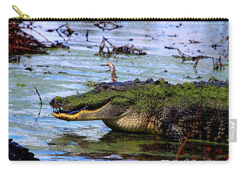 American Alligator Carry-all Pouch featuring the photograph Gator Growl by Barbara Bowen