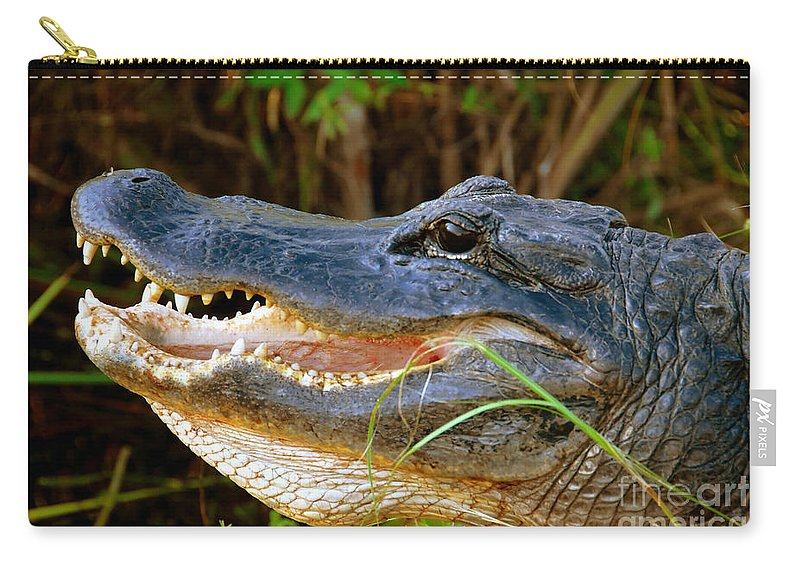 Alligator Carry-all Pouch featuring the photograph Gator Head by David Lee Thompson