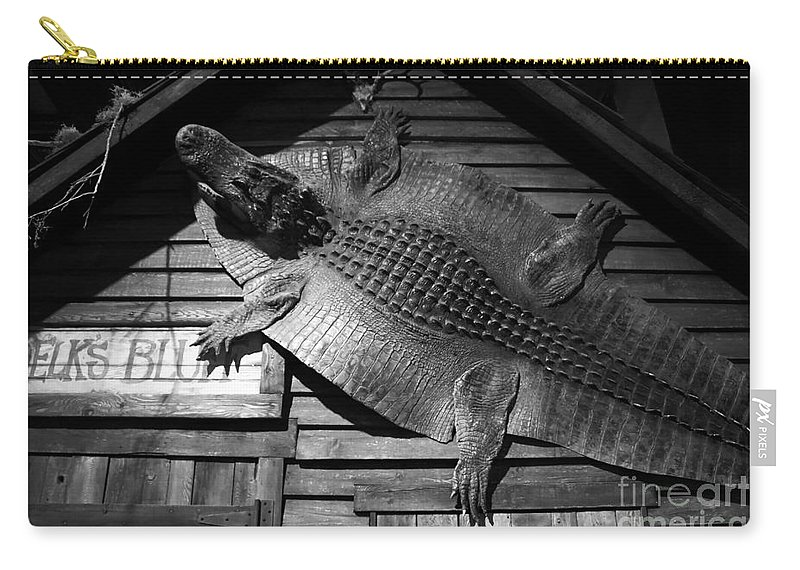 Alligator Carry-all Pouch featuring the photograph Gator Hide by David Lee Thompson