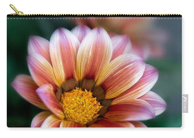 Bloom Carry-all Pouch featuring the photograph Gazania Petals Vii by David and Carol Kelly