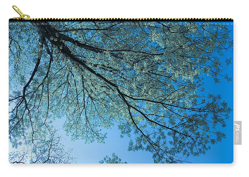 Scenic Carry-all Pouch featuring the photograph Gazing by Scott Wyatt