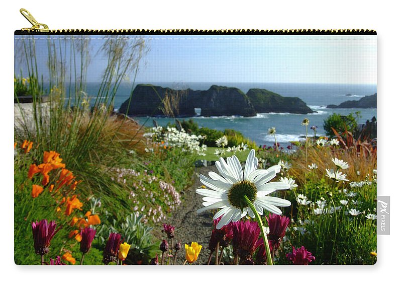 Daisy Carry-all Pouch featuring the photograph Gazing Toward The Sea by Donna Blackhall