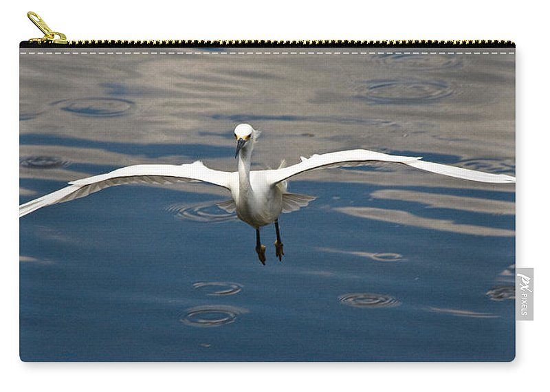 Snowy Egret Carry-all Pouch featuring the photograph Gear Down by Christopher Holmes