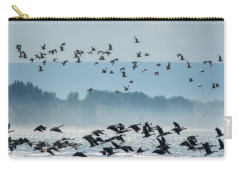 Birds Carry-all Pouch featuring the photograph Geese And Gulls by Richard Kitchen
