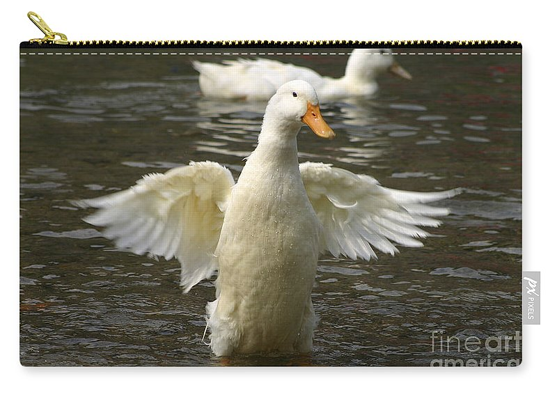 Ducks Carry-all Pouch featuring the photograph Geese In The Water by Danny Yanai