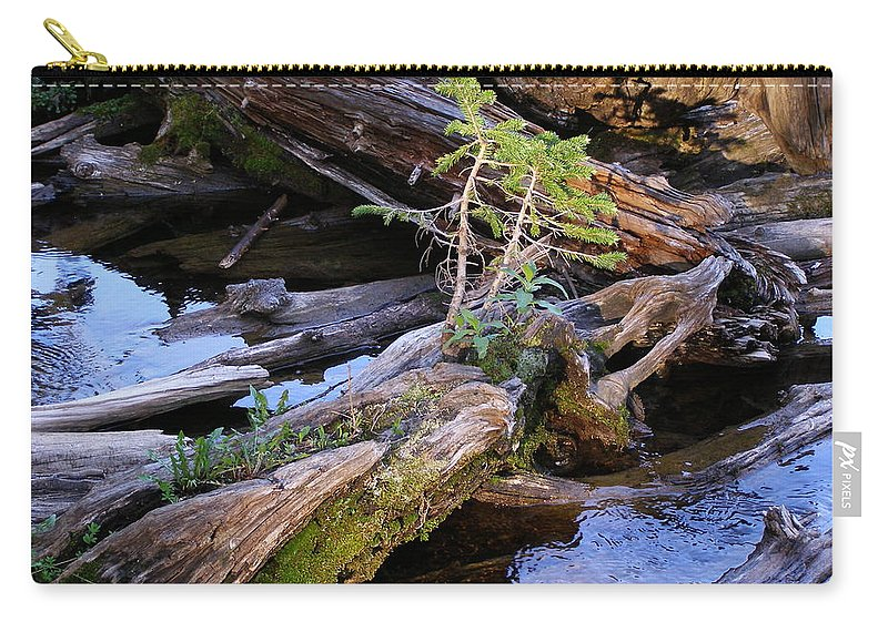 Water Carry-all Pouch featuring the photograph Generations by DeeLon Merritt