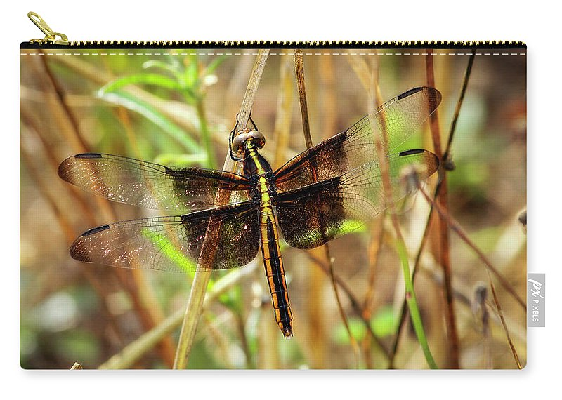 Reid Callaway Green Dragonflies Carry-all Pouch featuring the photograph Georgia On My Mind Ray Charles Dragonfly Art by Reid Callaway