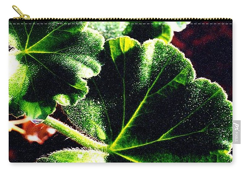 Geraniums Carry-all Pouch featuring the photograph Geranium Leaves by Nancy Mueller
